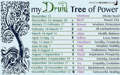 Magical Recipies Online | Celtic Astrology Druid Zodiac Signs