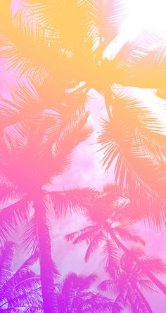 Palm tree wallpaper iphone pink 30 Ideas for 2019 Beachy Wallpaper, Natur Wallpaper, Tree Wallpaper Iphone, Summer Wallpaper, Wallpaper Backgrounds, Pastel Wallpaper, Iphone Backgrounds, Wallpaper Ideas, Screen Wallpaper