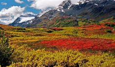 Colorful Land - Alaska - - The THOMPSON PASS ( 855 m / 2800 ft) is located in the Chugach Mountains northeast of Valdez, Alaska.