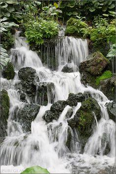 Visiting beautiful Singapore Botanical Garden and National Orchid Garden - waterfall - Singapore, Asia