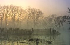 foggy mornings in the country Landscape Photography, Nature Photography, Weather Storm, Beautiful Landscapes, Mother Nature, Hygge Autumn, Mists, Serenity, Scenery
