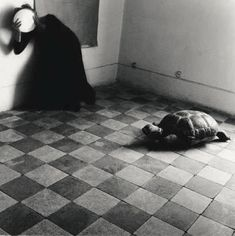 Francesca Woodman (USA, April 3, 1958 – January 19, 1981) was a photographer best known for her black and white pictures featuring herself and female models. Many of her photographs show young women who are nude, who are blurred (due to movement and long exposure times), who are merging with their surroundings, or whose faces are obscured. Her work continues to be the subject of much attention, years after she committed suicide at the age of 22.