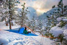 Tent Flite + Forest Green Tentsile - AlpinStore