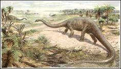 Résultats de recherche d'images pour «diplodocus»