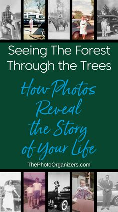 Seeing the Forest for the Trees: How Photos Reveal the Story of Your Life | ThePhotoOrganizers.com