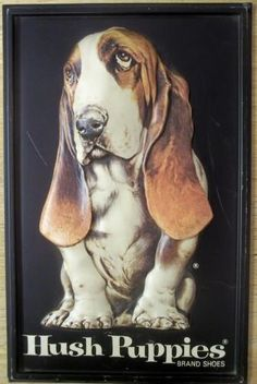 Hush Puppy Shoes bassett Hound | Hush Puppies Basset Hound Advertising by SandyCreekCollectables