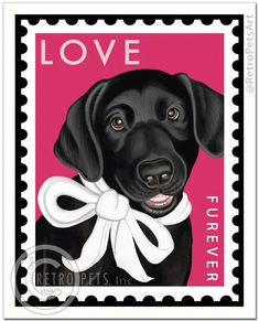 Labrador Retriever Gifts presents Black Lab Art: art prints, posters, canvas art and wall decals. Custom portraits of your own Labrador dog, too! Over 100 Black Lab artworks to choose from. Labrador Noir, Labrador Retriever Dog, Black Labrador, I Love Dogs, Puppy Love, Art Amour, Homeless Dogs, Lab Puppies, Black Labs