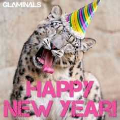 Happy New Year! Check out glaminals.com today