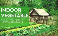 Growco Indoor Garden Supply Growco indoor garden supply 877 939 6900 hydroponics pinterest indoor vegetable garden 37 veggies you can grow indoors workwithnaturefo