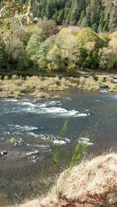 Oregon Oregon, River, Outdoor, Outdoors, Outdoor Games, Outdoor Living, Rivers