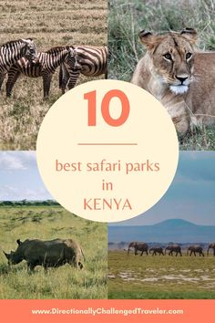 The best safari parks in Kenya to spot the big 5 and have incredible animal sightings! Kenya Travel, Africa Travel, Big 5, Where To Go, Places To See, The Good Place, Travel Inspiration, Parks, Safari