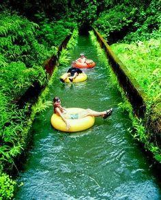 This looks amazing! Canal tubing in Kauai Hawaii