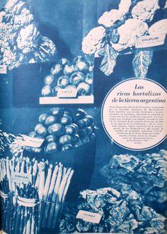 """""""Ricas hortalizas de la tierra argentina"""".  Esta foto fue tomada en la Exposición Floral de primavera organizada por la Sociedad Argentina de Horticultura, en la cual hubo una sección destinada a la presentación de hortalizas. Fuente: Revista M.A.N. 1937 (Octubre)"""