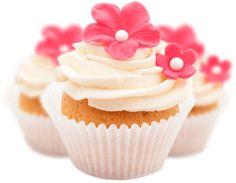 Best Lovely Mini Cake in USA. JS yummy. . facebook.com/yummyjs twitter.com/yummyjs Instagram.com/jsyummy2 linkedin.com/in/jsyummy . . #jsyummy #yummy #sweets #puddingcake #cupcakes #heardshafecake #drinks #whiteforestcake #baking #Pink #Rose #Cake #Pinkrosecake #cartoon #cake #vanila #cake #vanilacake #happy #birthday #cake #happybirthdaycake #flowerscake #Flowers #flowers #love #cake #Flowerslovecake #Firni #softcake #whiteflowerscake Pink Rose Cake, Forest Cake, Pudding Cake, Happy Birthday Cakes, Love Cake, Mini Cakes, White Flowers, Cupcakes, Sweets