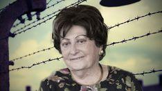 Auschwitz 75 años después: 13 lecciones universales Environment, Freedom Of Religion