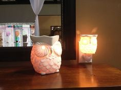 Whoot Scentsy Warmer and plug in available Sept. 1st!! Call me, txt, email, or msg me :)  http://norau.scentsy.us