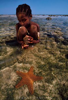 Collecting sea urchins, Western Madagascar. BelAfrique - your personal travel planner - www.BelAfrique.com