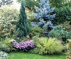 good use of evergreens Evergreen Landscape, Evergreen Garden, Evergreen Shrubs, Privacy Landscaping, Front Yard Landscaping, Landscaping Rocks, Lawn And Garden, Dream Garden, Garden Planning