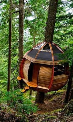 More ideas below: Amazing Tiny treehouse kids Architecture Modern Luxury treehouse interior cozy Bac Treehouse Masters, Gazebo, Pergola, Cool Tree Houses, Amazing Houses, Cozy Backyard, Tree House Designs, Tree Tops, In The Tree