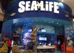 sea life aquarium orlando