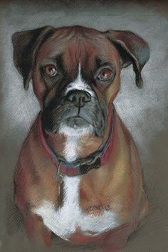 Animal Art~ Tears In Your Eyes ~ pastels