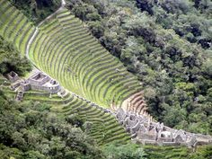 Explore the Nature of the Andes and Discover Ancient Inca Ruins. Experience of Trekking on the Routes through the Andes. Inca, Trekking, Vineyard, Tours, Explore, Nature, Outdoor, Google, Cusco
