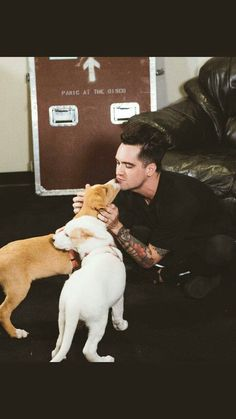 Shared by 🌺🌸 jEsSiCa 🌹🌼. Find images and videos about brendon urie on We Heart It - the app to get lost in what you love. Brendon Urie Memes, Evan Peters, Panic! At The Disco, Emo Bands, My Spirit Animal, Pop Punk, My Chemical Romance, Queen, Music Artists
