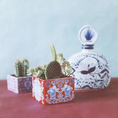 Porcelain mini planter. EmilieBok design. Photography © Melanie Rodriguez
