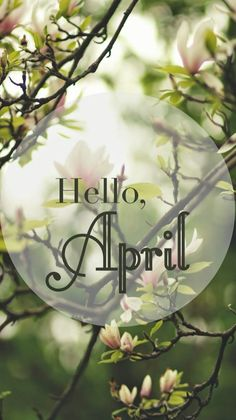 Hello April#spring#wallpaper iPhone