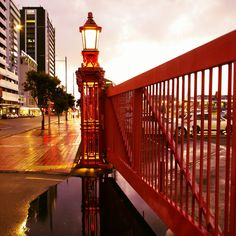 Golden Hour on Quay Street, downtown Auckland, New Zealand! Places To See, Places Ive Been, Long White Cloud, South Island, City Art, Golden Hour, Auckland, Golden Gate Bridge, New Zealand