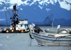 It's been 30 years since Jon Rowley first persuaded a few salmon fishermen on Alaska's Copper River that they might be able to do something with their superb fish other than sell it to the cannery. But even he never guessed things would get this crazy.