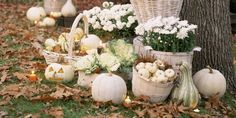 10 Elegant Ways To Decorate With Pumpkins This Fall - TownandCountrymag.com