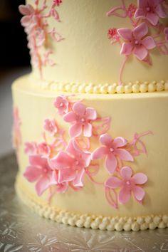 Pink & yellow cake (Erin Johnson Photography)