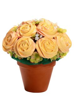 S-Potted Large Bouquet Display (12 piece cake)