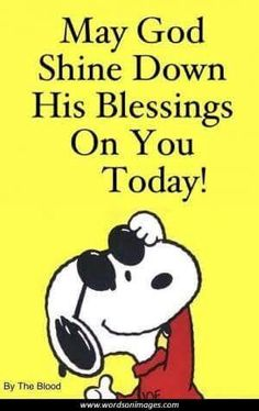 By Charlie Brown Peanuts Quotes Snoopy Love, Charlie Brown And Snoopy, Snoopy And Woodstock, Happy Birthday Charlie Brown, Peanuts Quotes, Snoopy Quotes, Peanuts Cartoon, Peanuts Snoopy, Snoopy Cartoon