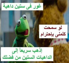 Funny Photo Memes, Funny Picture Jokes, Memes Funny Faces, Funny Qoutes, Jokes Quotes, Funny Photos, Arabic Jokes, Arabic Funny, Funny Arabic Quotes
