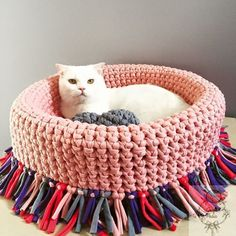 😼 How to add a pet room to tiny home? to learn cat room i Animal Room, Easy Crochet, Knit Crochet, Sleep Cartoon, Cat Couch, Cat Room, Pet Furniture, Diy Stuffed Animals, Pet Beds
