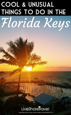 There many unusual things to do in the Florida Keys and Key West from saving turtles, to visiting Hemmingway's home and the southernmost point of the US Florida Vacation, Florida Travel, Vacation Spots, Travel Usa, Travel Tips, Travel Essentials, Travel Advice, Travel Guides, Florida Keys Map
