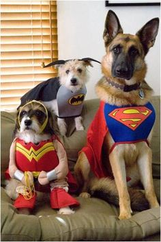 Super Heroes are here to save the day.