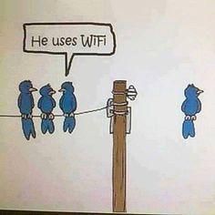 #FunnyFriday