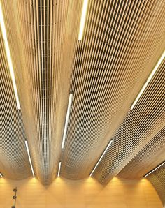 American red oak features in the spanish House of Representatives Interior Ceiling Design, Ceiling Light Design, Interior Exterior, Lighting Design, Interior Architecture, Ceiling Lights, Lighting Ideas, Building Foundation, Cove Lighting