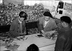 Spain - 1936-39. - GC - El racionamiento de pan.