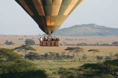 Globo Safari