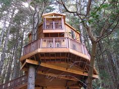This Treehouse Paradise is The Perfect Oregon Getaway This tree house paradise is the perfect getaway in Oregon. This Oregon … Oregon Road Trip, Oregon Travel, Oregon Hiking, Oregon Vacation, Vertical Horizon, Underground Cities, Redwood Forest, The Perfect Getaway, Oregon Coast