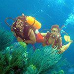 Indian Ocean scuba diving at Kisite Marine Park off Kenya