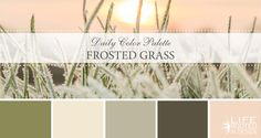 Daily Color Palette: Frosted Grass. A unique blush color palette. Find inspiration in winter's softness. Life Rooted in Design