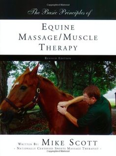 The Basic Principles of Equine Massage/Muscle Therapy, Equine Massage, Horse Massage by Equine Therapist Mike Scott Equine Massage Therapy, Sports Massage Therapist, Veterinary Studies, Animal Reiki, Horse Books, Horse Training, Horse Care, Horses, Muscle