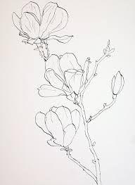 Risultati immagini per magnolia outline