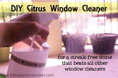 window cleaner1