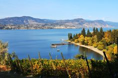Sample exquisite wines and delicious canapes from Hillside Winery & Bistro while cruising the south end of Okanagan Lake and the beautiful Naramata Beaches.